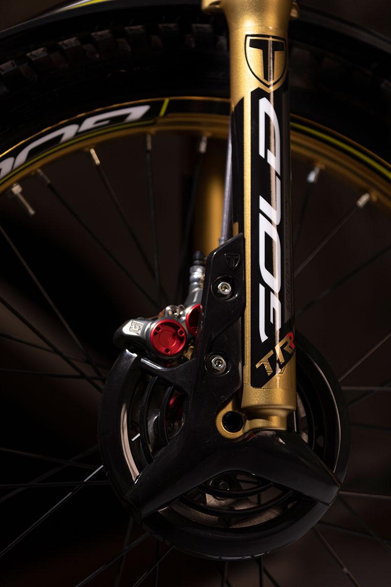 gold-detalle-5